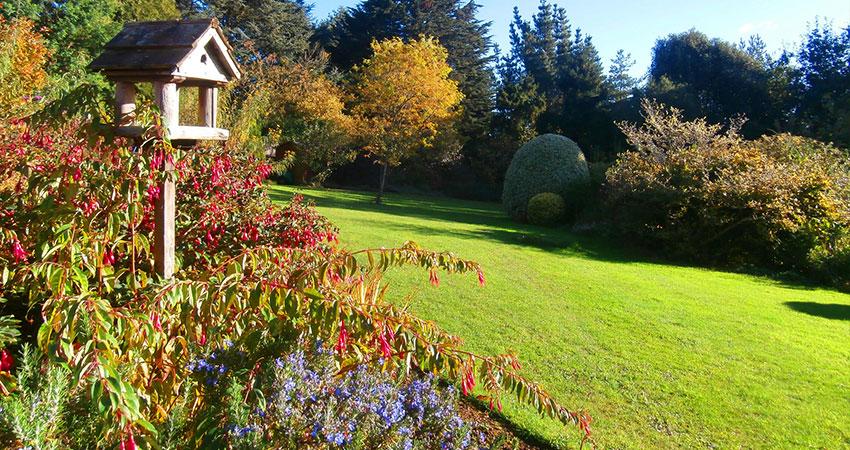 sol y plantas empresas de jardineria